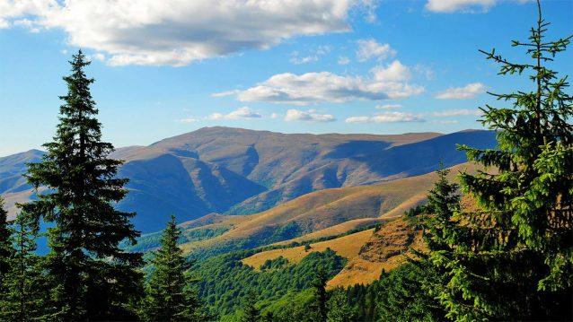 letnji joga odmor stara planina